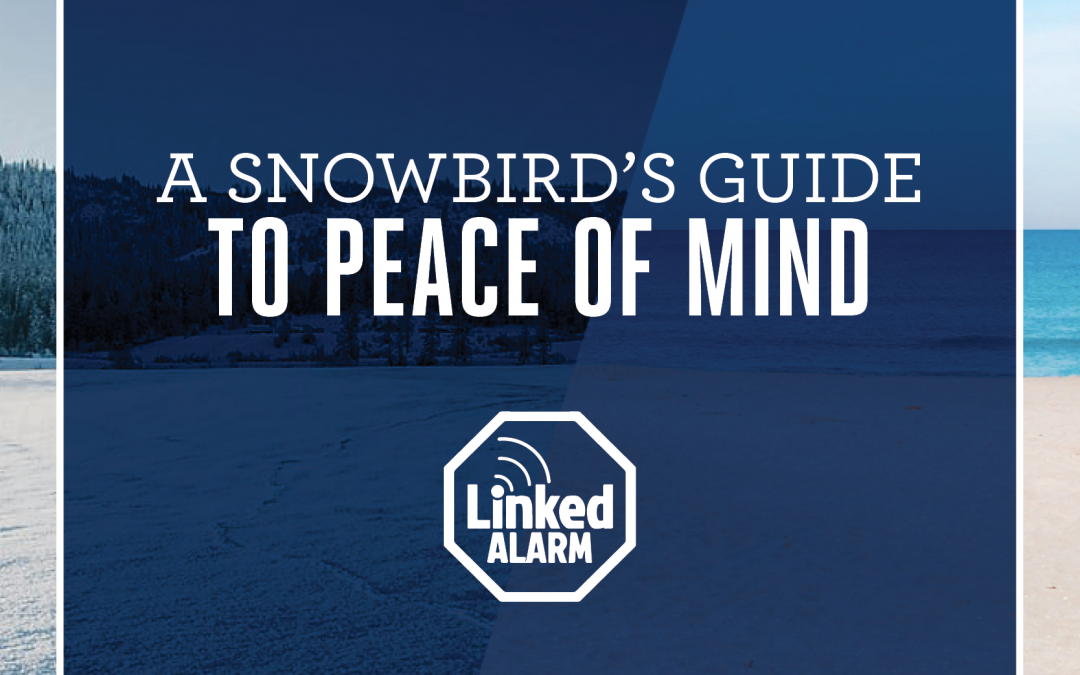 A Snowbird's Guide to Peace of Mind